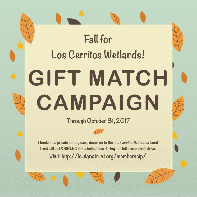 Los Cerritos Wetlands Gift Match Campaign